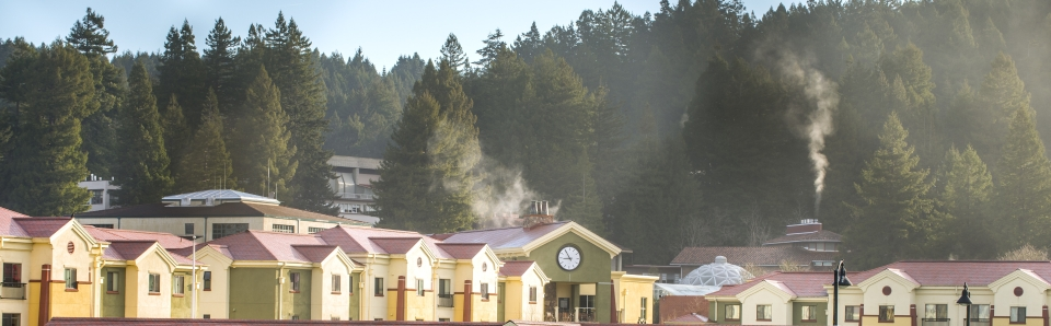 view of campus with trees