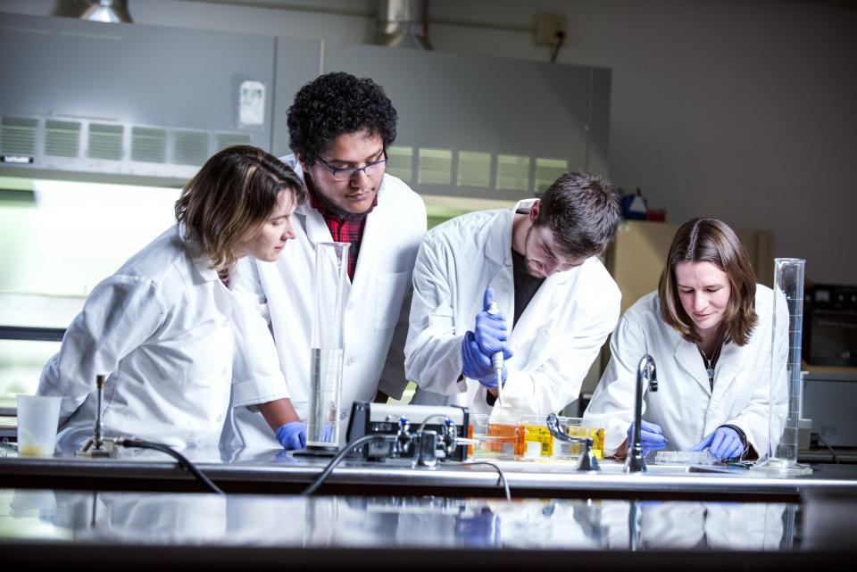 4 students in a lab wearing lab coats looking at their experiment
