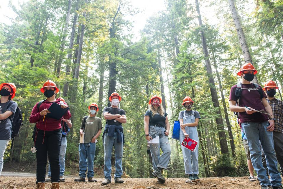 masked forestry students in the redwoods
